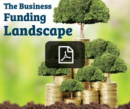 business funding landscape - KC.jpg